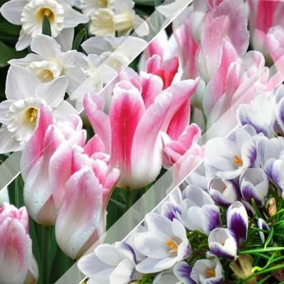 Набор Весенний вальс