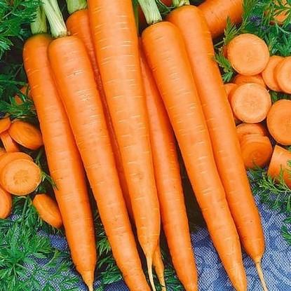 Морковь на ленте Император 8 м