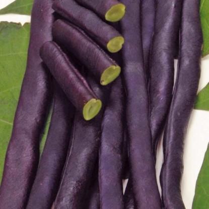 Фасоль Пурпурная королева спаржевая