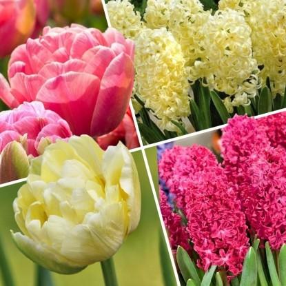 Набор Цветочный фокстрот
