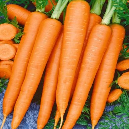 Морковь Золотая осень (сер. Заморозь)