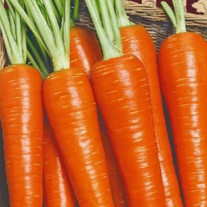 Морковь Нежная (сер. Ленивый огород)