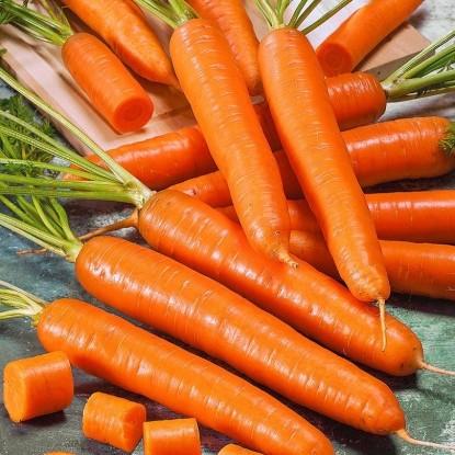 Морковь Найджел F1