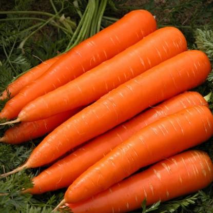Морковь Император (Овощная коллекция)