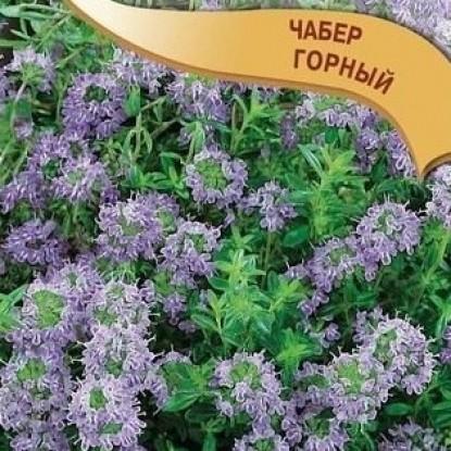 Чабер Горный