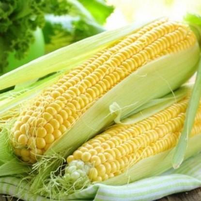 Кукуруза Кубанский Сахарный 210 цп