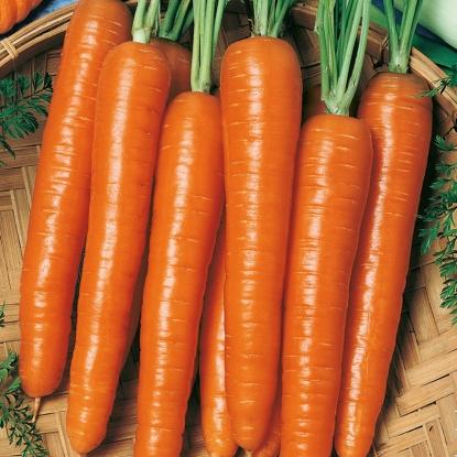 Морковь гранулир. Оранжевый мускат гель