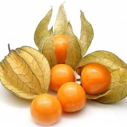 Физалис ягодный Янтарь