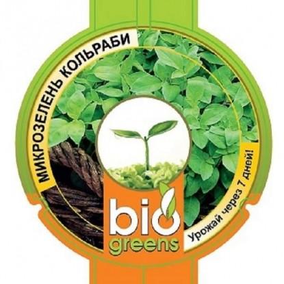 Свежая зелень (семена кольраби и лоток для проращивания)