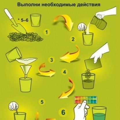 АгроХимик тест-система (5 амп*1 мл.) для определения кислотности почвы
