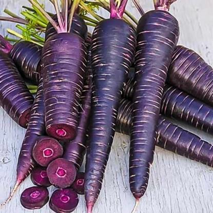 Морковь Карамель фиолетовая F1