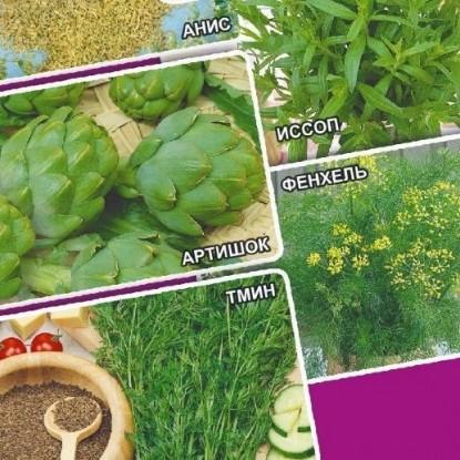 Лекарственный огород Мочегонный