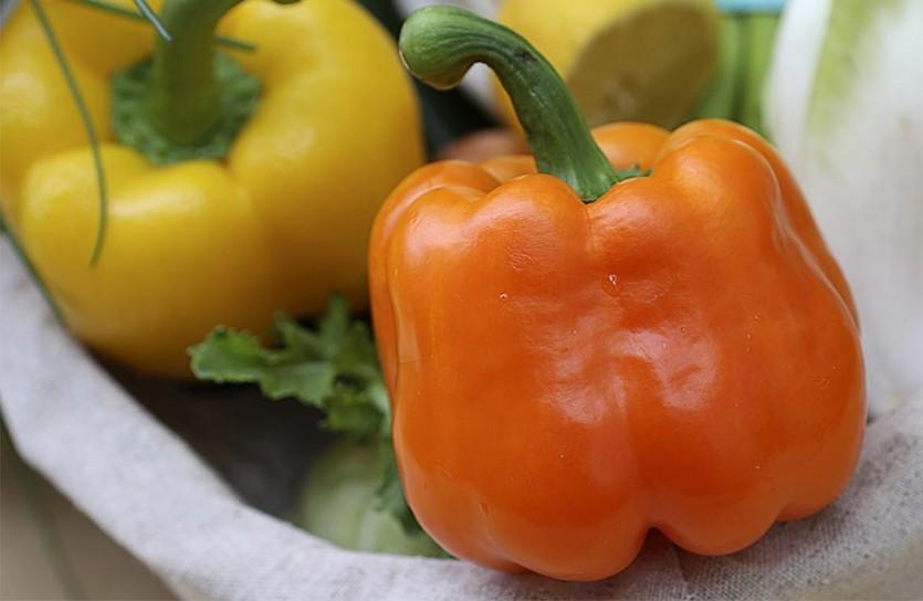 световой режим для рассады перцев и томатов